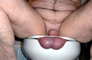 smushed balls in a toilet seat