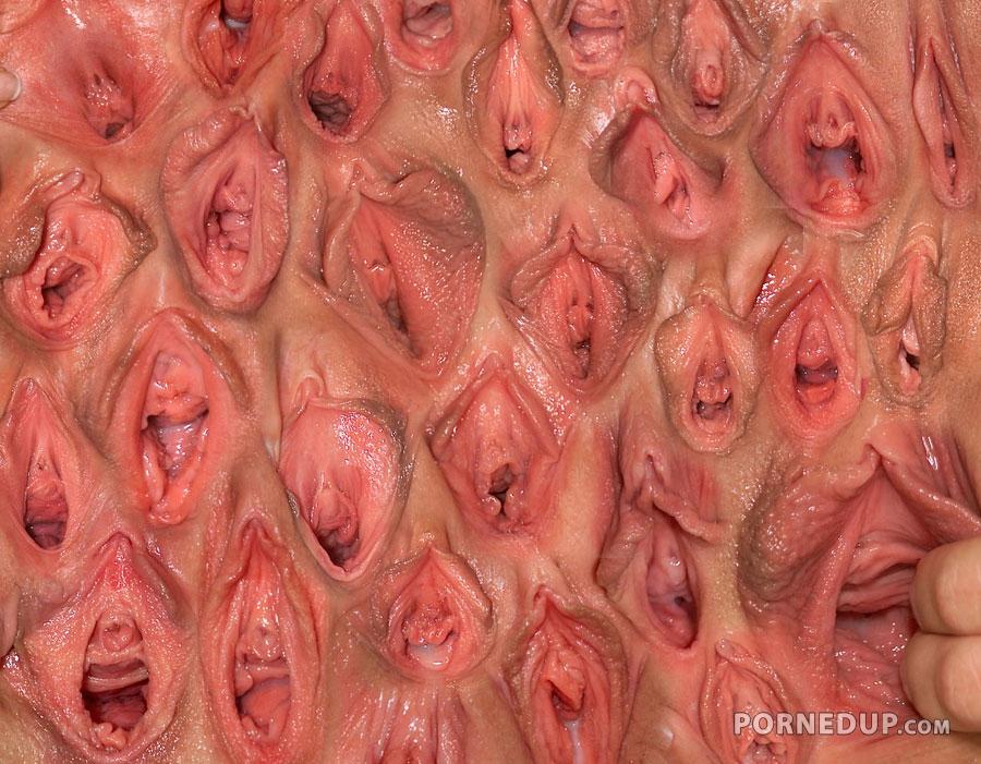 vidi-penisov-i-vagin