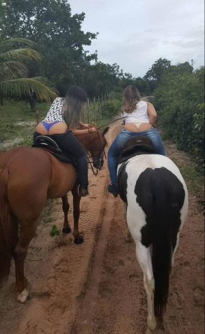 Sexy Asses Horseriding
