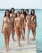 Six beautiful women standing on the dock