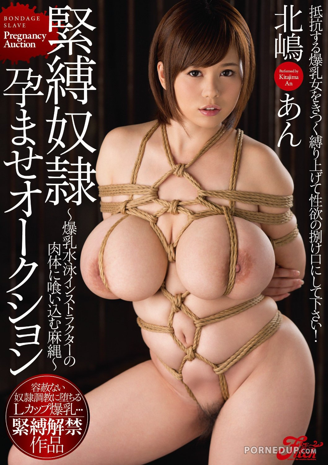 Tied Up Huge Boob Japanese Babe - Porned Up-1549
